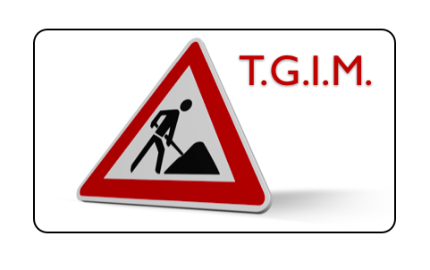 TGIM- Thank God it's Monday, The Myndset Marketing Digital and Brand Strategy
